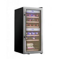 Винный шкаф Cold Vine C24-KSF2