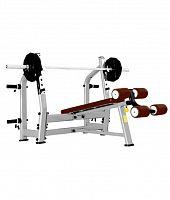 Скамья для жима Bronze Gym J-024 C