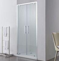 Душевая дверь SSWW LD60-Y22 (1100*1950)