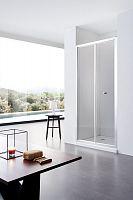 Душевая дверь SSWW LQ60-Y22 (900*1950)